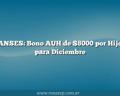 ANSES: Bono AUH de $8000 por Hijo para Diciembre
