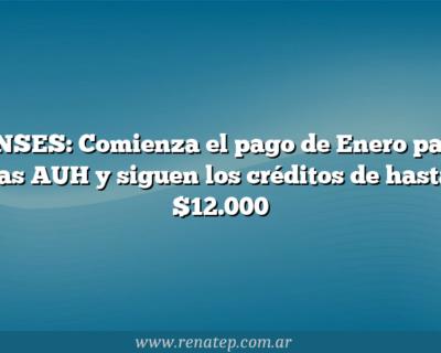 ANSES: Comienza el pago de Enero para las AUH y siguen los créditos de hasta $12.000