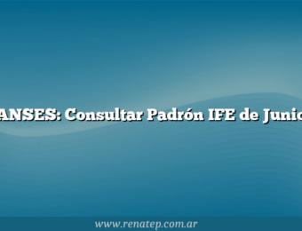 ANSES: Consultar Padrón IFE de Junio