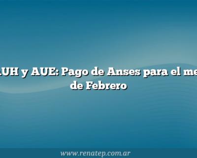 AUH y AUE: Pago de Anses para el mes de Febrero