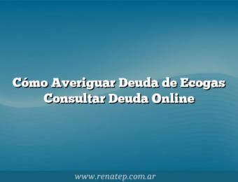 Cómo Averiguar Deuda de Ecogas  Consultar Deuda Online