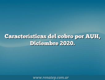 Características del cobro por AUH, Diciembre 2020.