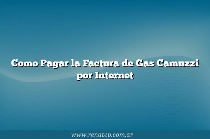 Como Pagar la Factura de Gas Camuzzi por Internet