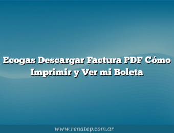 Ecogas Descargar Factura PDF Cómo Imprimir y Ver mi Boleta