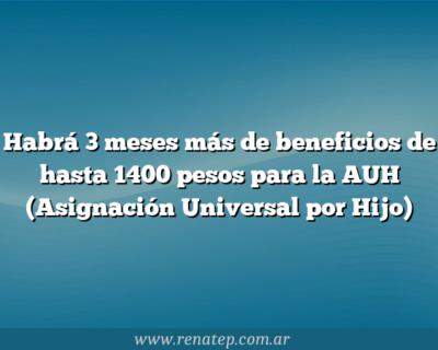 Habrá 3 meses más de beneficios de hasta 1400 pesos para la AUH (Asignación Universal por Hijo)