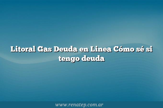 Litoral Gas Deuda en Linea Cómo sé si tengo deuda