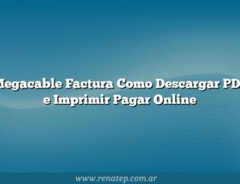 Megacable Factura Como Descargar PDF e Imprimir  Pagar Online
