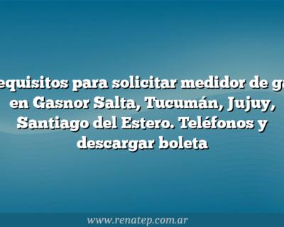 Requisitos para solicitar medidor de gas en Gasnor Salta, Tucumán, Jujuy, Santiago del Estero. Teléfonos y descargar boleta