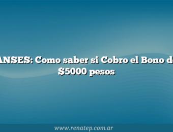 ANSES:  Como saber si Cobro el Bono de $5000 pesos