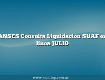 ANSES Consulta Liquidacion SUAF en linea JULIO