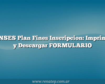 ANSES Plan Fines  Inscripcion: Imprimir y Descargar FORMULARIO