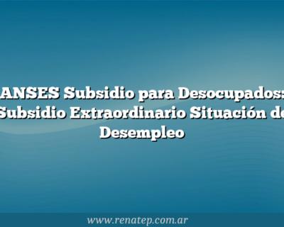 ANSES Subsidio para Desocupados:  Subsidio Extraordinario Situación de Desempleo