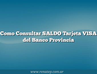 Como Consultar SALDO Tarjeta VISA del Banco Provincia