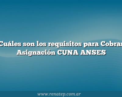 Cuáles son los requisitos para Cobrar Asignación CUNA ANSES