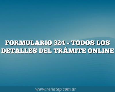 FORMULARIO 324 –  TODOS LOS DETALLES DEL TRÁMITE ONLINE