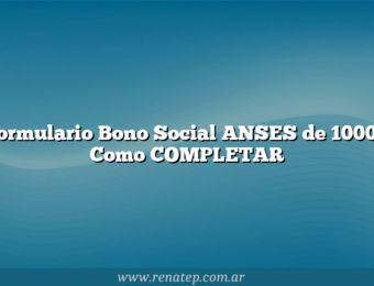 Formulario Bono Social ANSES de 10000  Como COMPLETAR