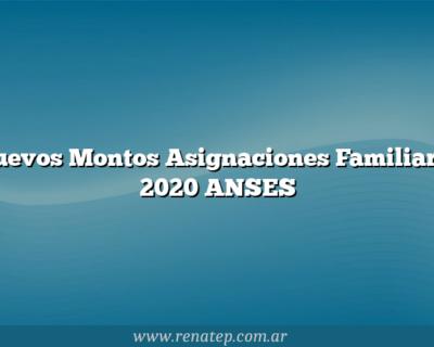 Nuevos Montos Asignaciones Familiares 2020 ANSES